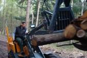 uitdunnen-bos-goirle-06